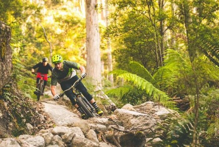 Person mountain biking. Photo: World Trail