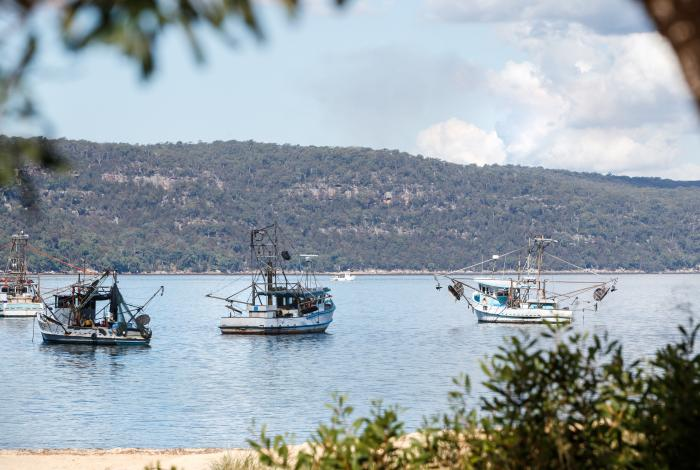 Photo of boats at Patonga Beach
